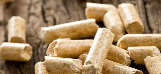 Cosa si intende per biomasse?   Macchedil Online Store
