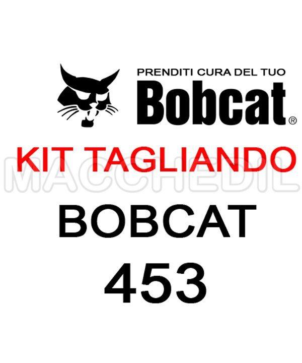 KIT TAGLIANDO BOBCAT 453 MACCHEDIL| Macchedil Online Store